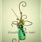shou_shou_des_meri