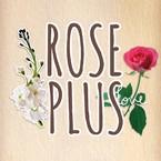 ROSE PLUS