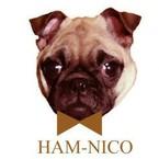 HAM-NICO